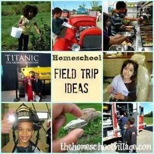 Homeschool Field Trip Ideas