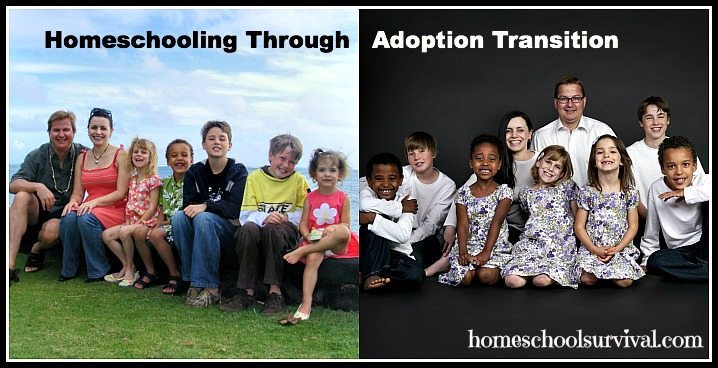 homeschooling through adoption transition