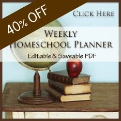 homeschool planner very limited time - 40% off with discount code!