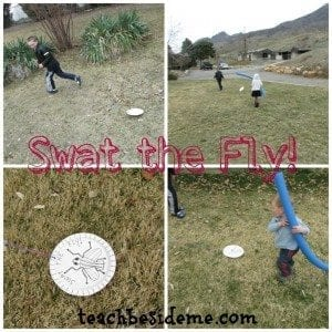 Swat the Fly Paper Plate Game