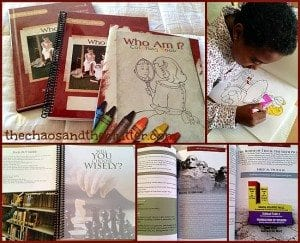 Who Am I? (Apologia sells the What We Believe Series)