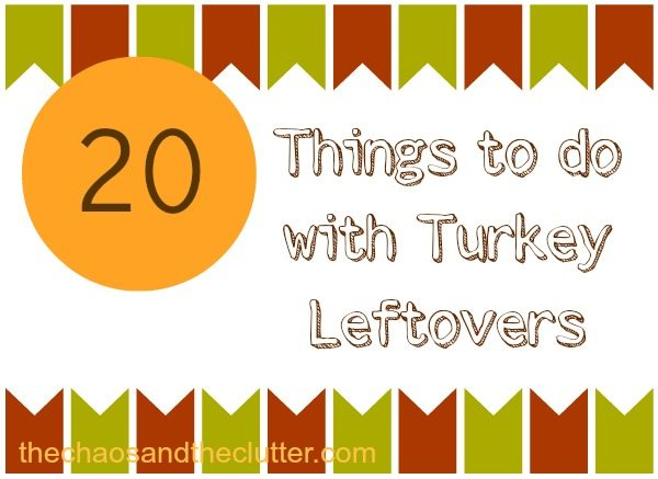 20 Things to do with Turkey Leftovers - Have too much turkey after the holidays? Here are some unique and delicious recipes to use them in