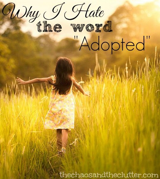 """Why I Hate the Word """"Adopted"""""""