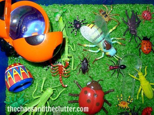 bugs sensory bin