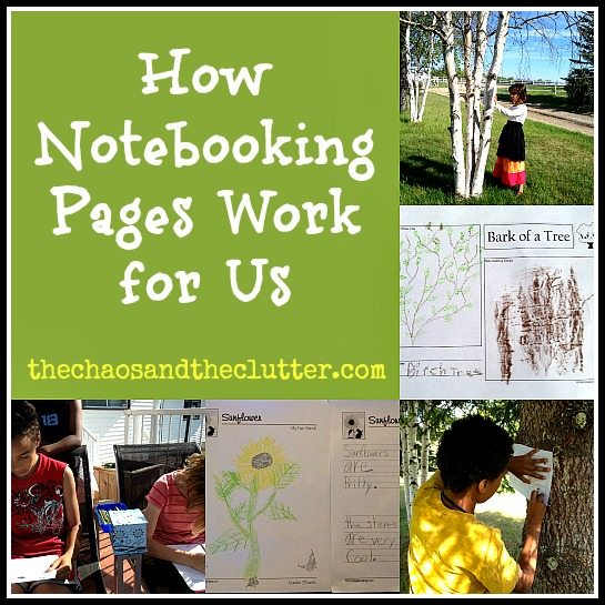 How We Use Notebooking Pages
