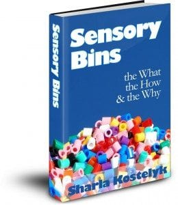 Sensory Bins Cover 3D