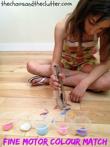Fine Motor Colour Match