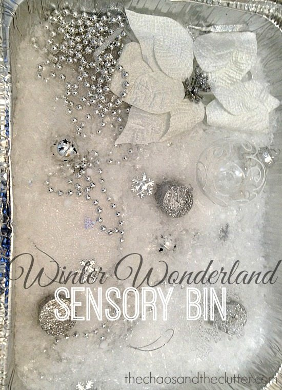 Winter Wonderland Sensory Bin